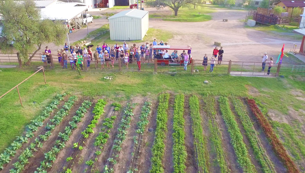 Educational group tour looks out over organic gardens